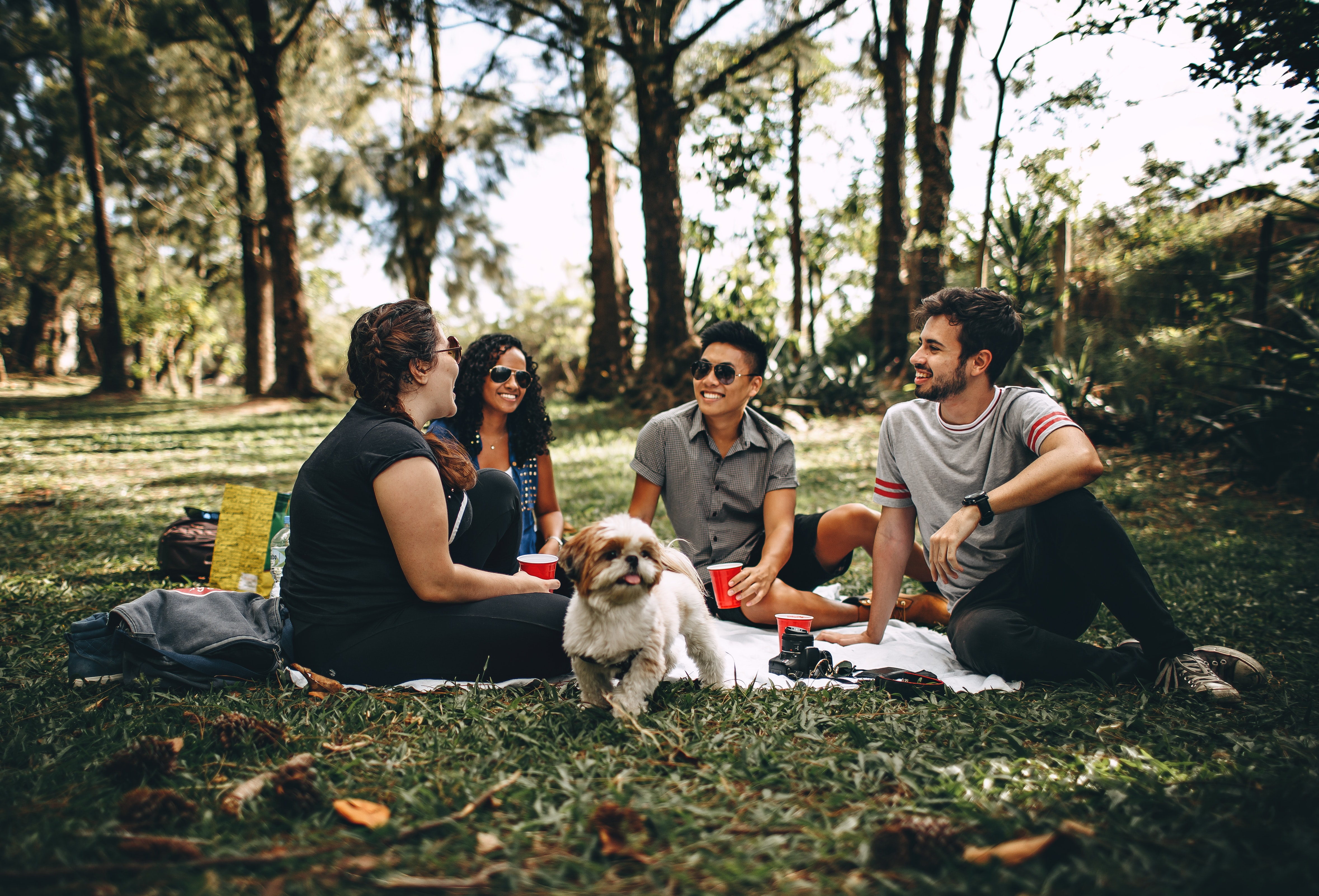 Friends chatting in a park with picnic