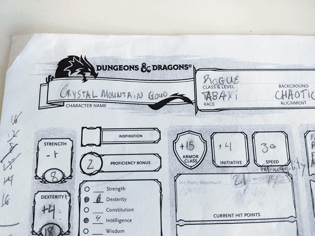 A DnD character sheet.